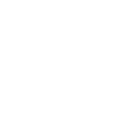 shark logo outlined